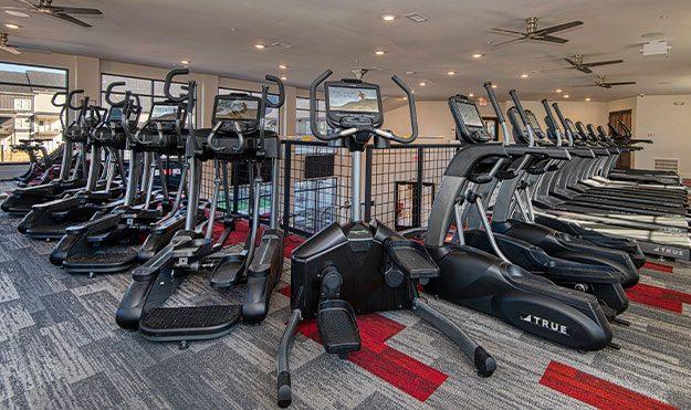 Cardio Equipment In Fitness Center